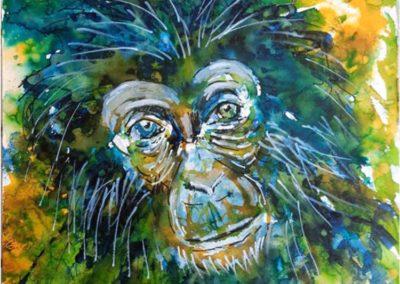 Titre : Petit chimpanzé / Matière : encre sur papier aquarelle / Format : 30x40